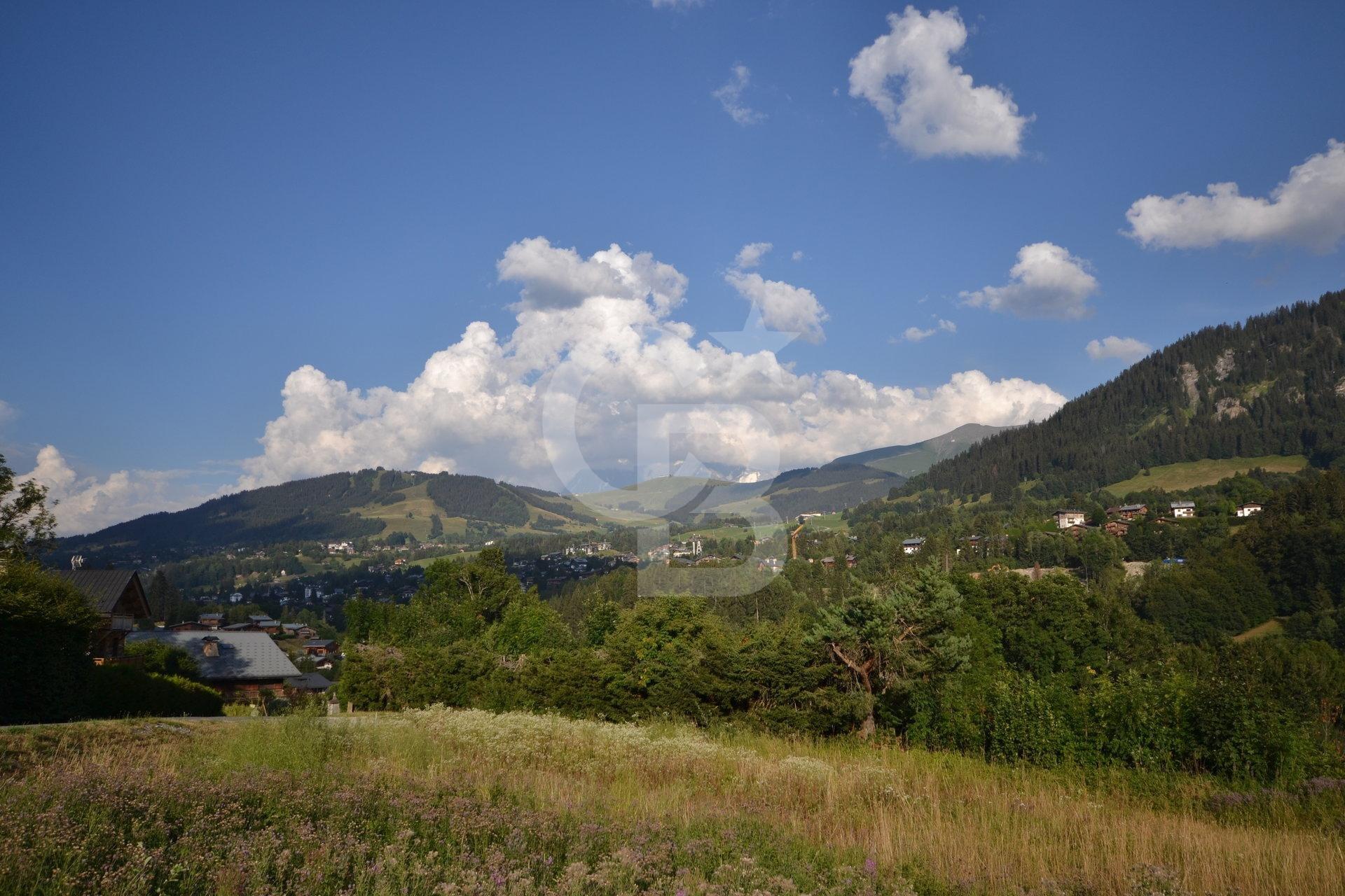 Vente Chalet - Megève