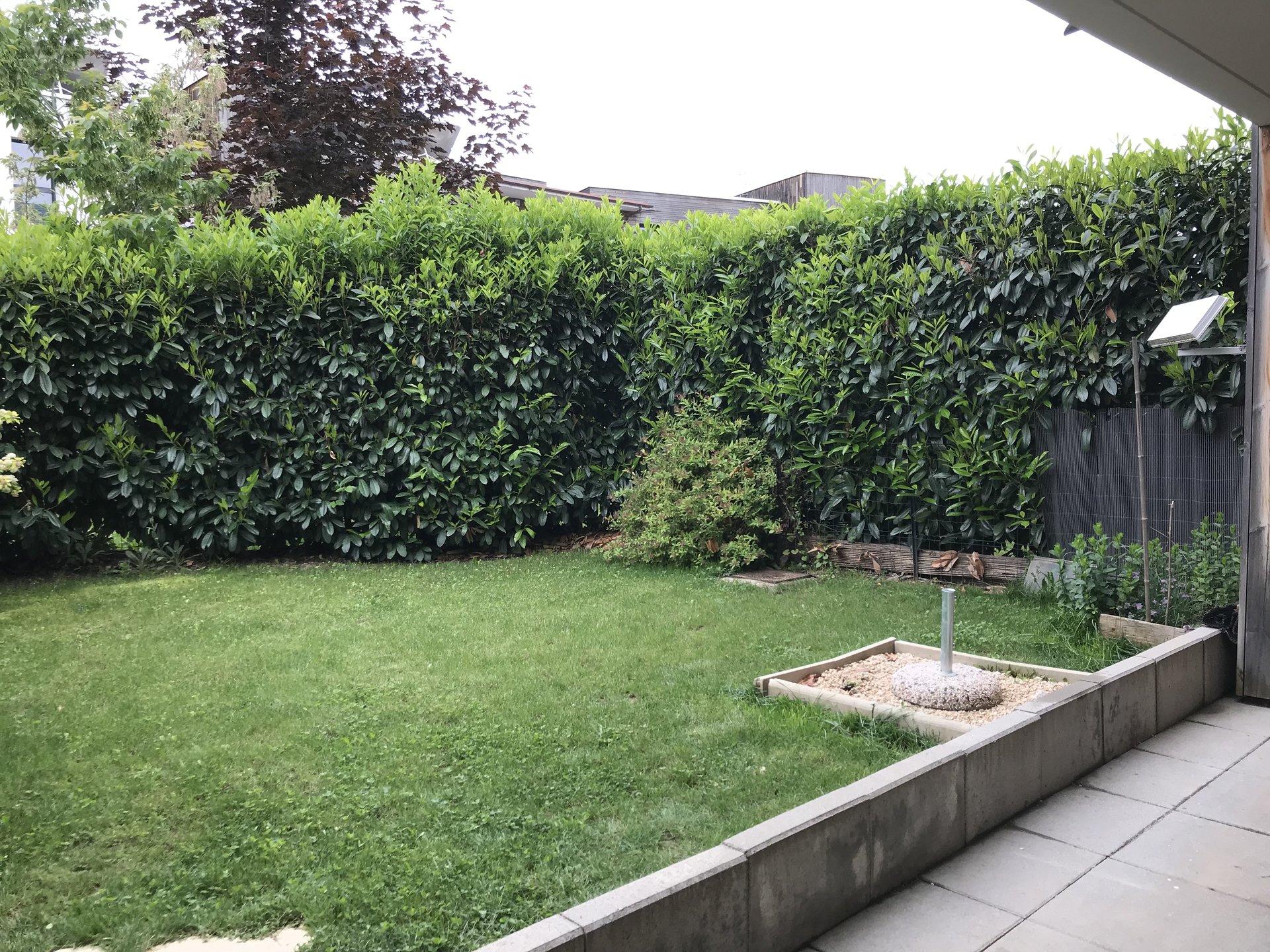 T2 meublé avec jardin