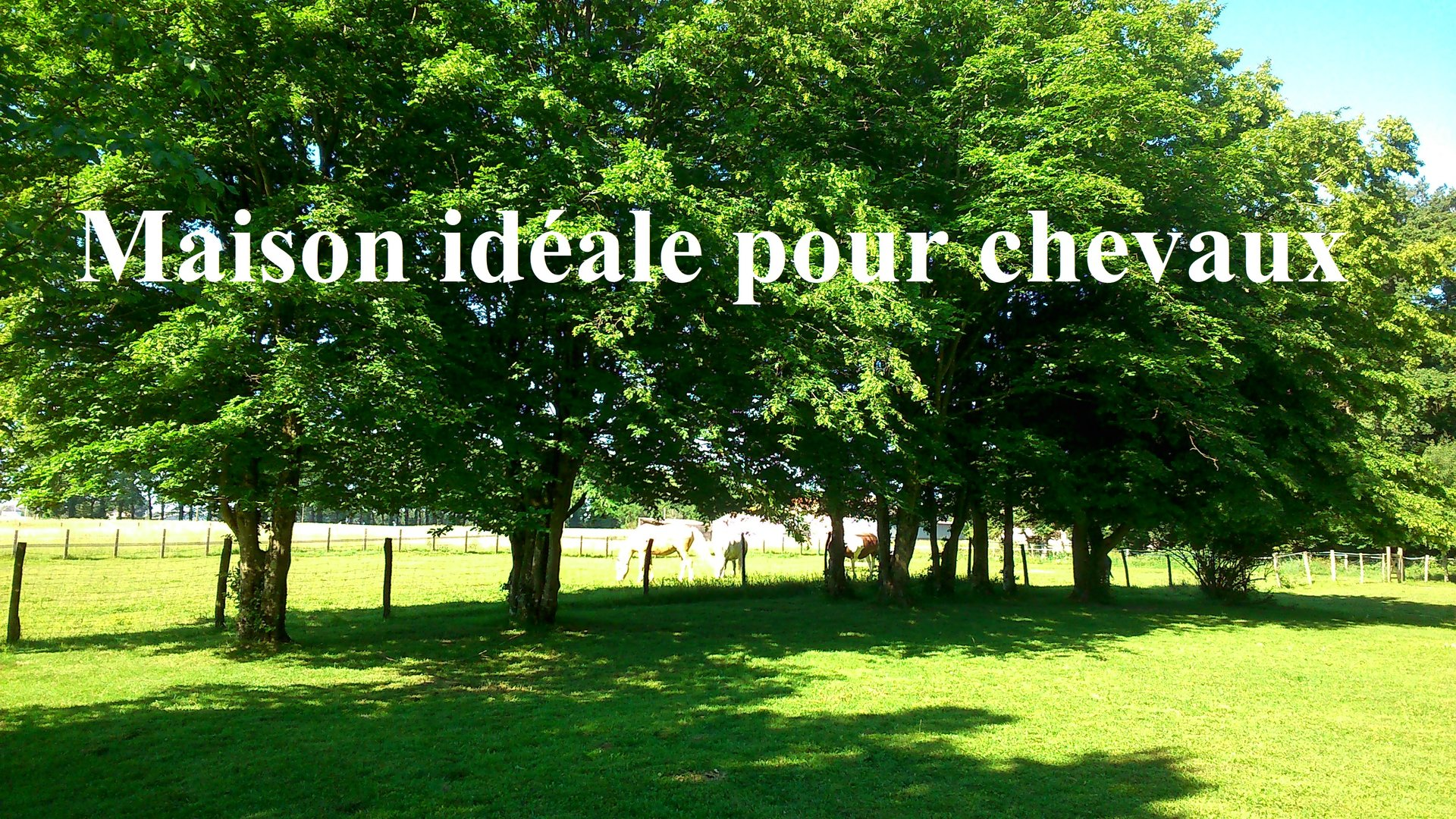 Vente Maison - Saint-Cyr-sur-Menthon