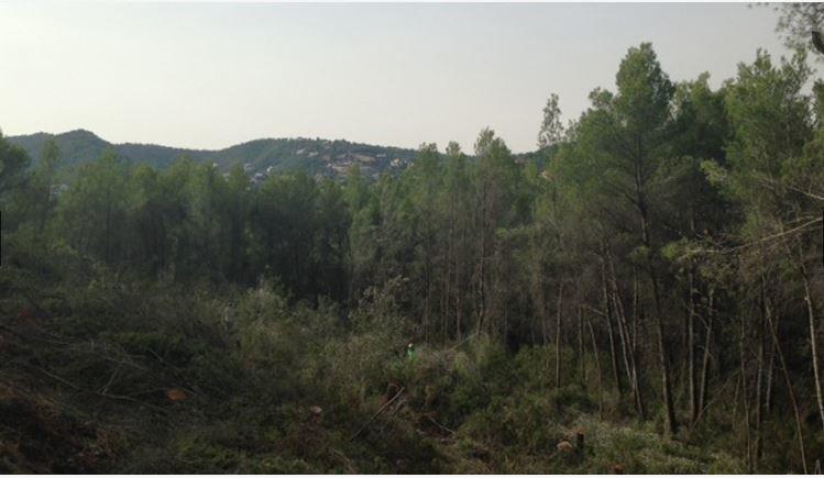 Sale Plot of land Palma de Mallorca Son Vida