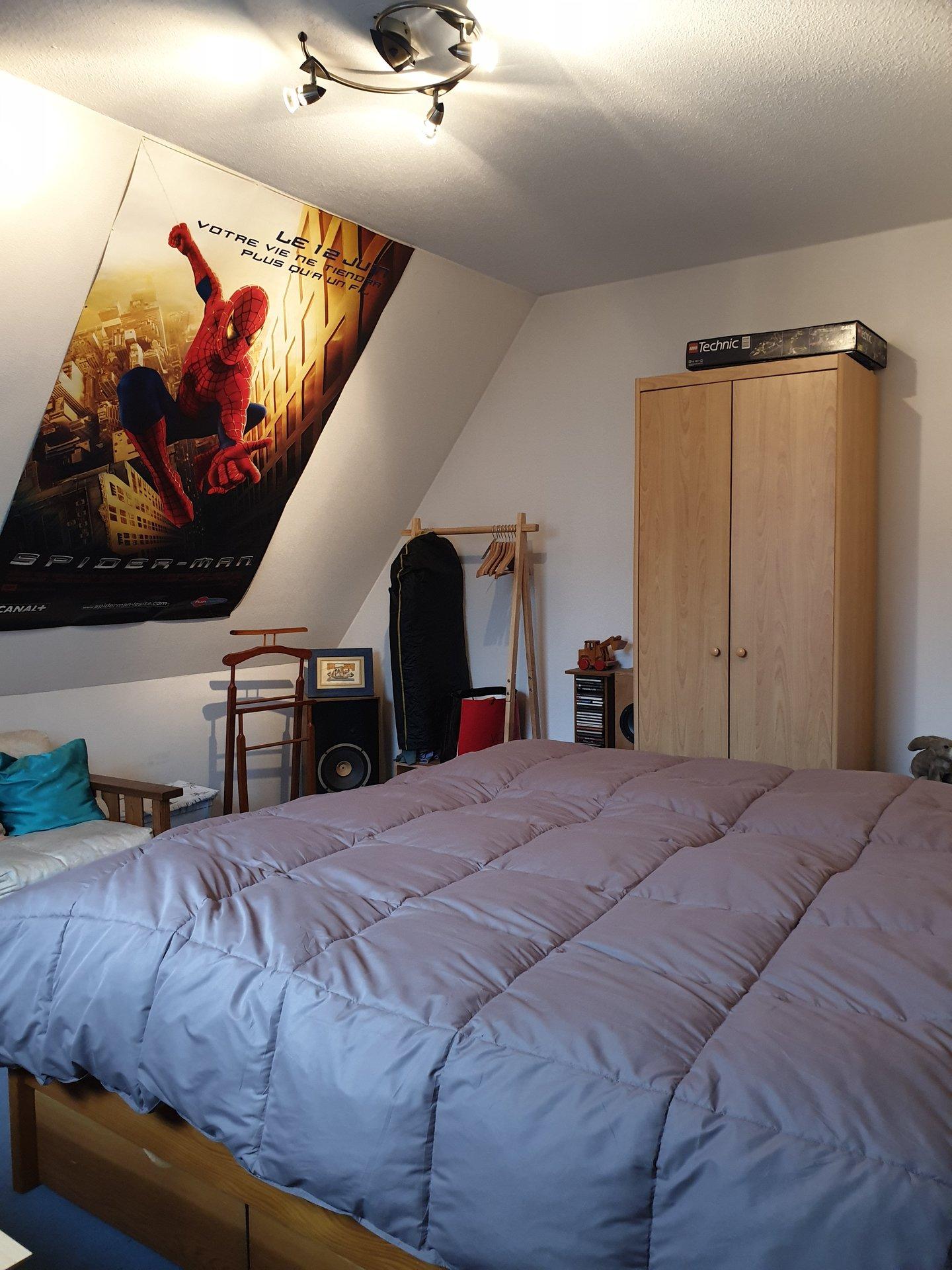 Strasbourg - Duplex à découvrir !!!