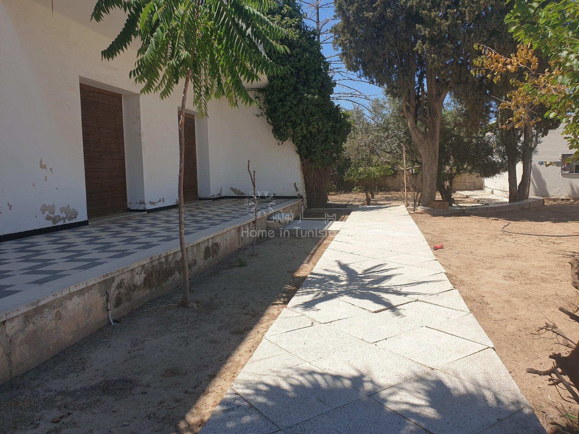 villa avec un grand terrain
