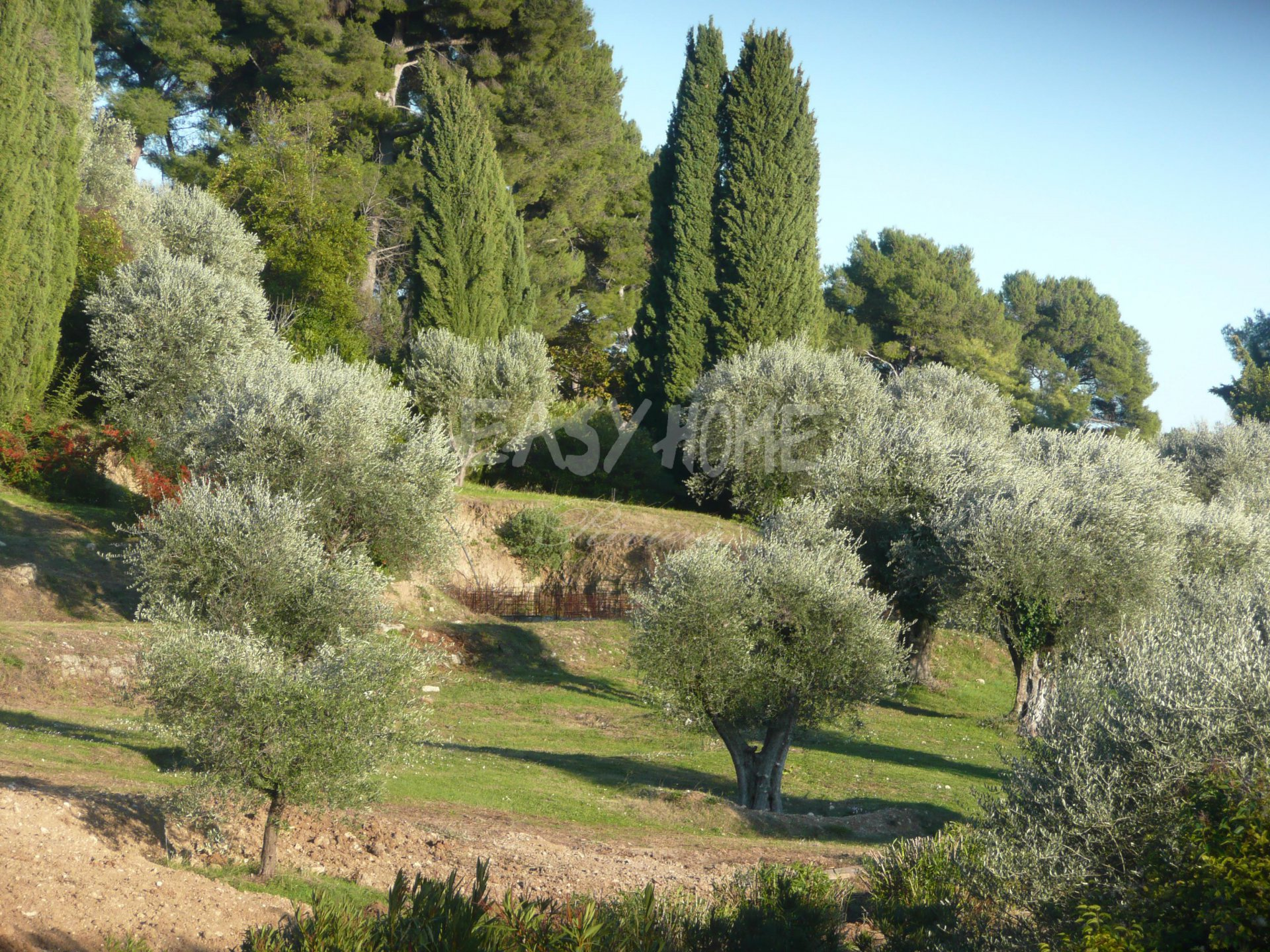 Purchase / Sale - Property of 45000 sqm  Mougins - A unique opportunity