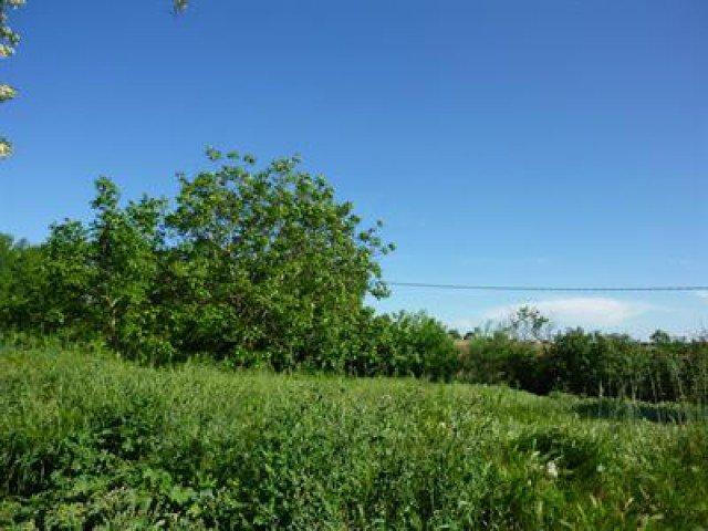 Sale Building land - Labastide-Beauvoir