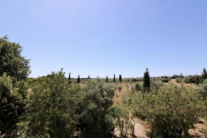 Mas Provençal entre Arles et les Alpilles