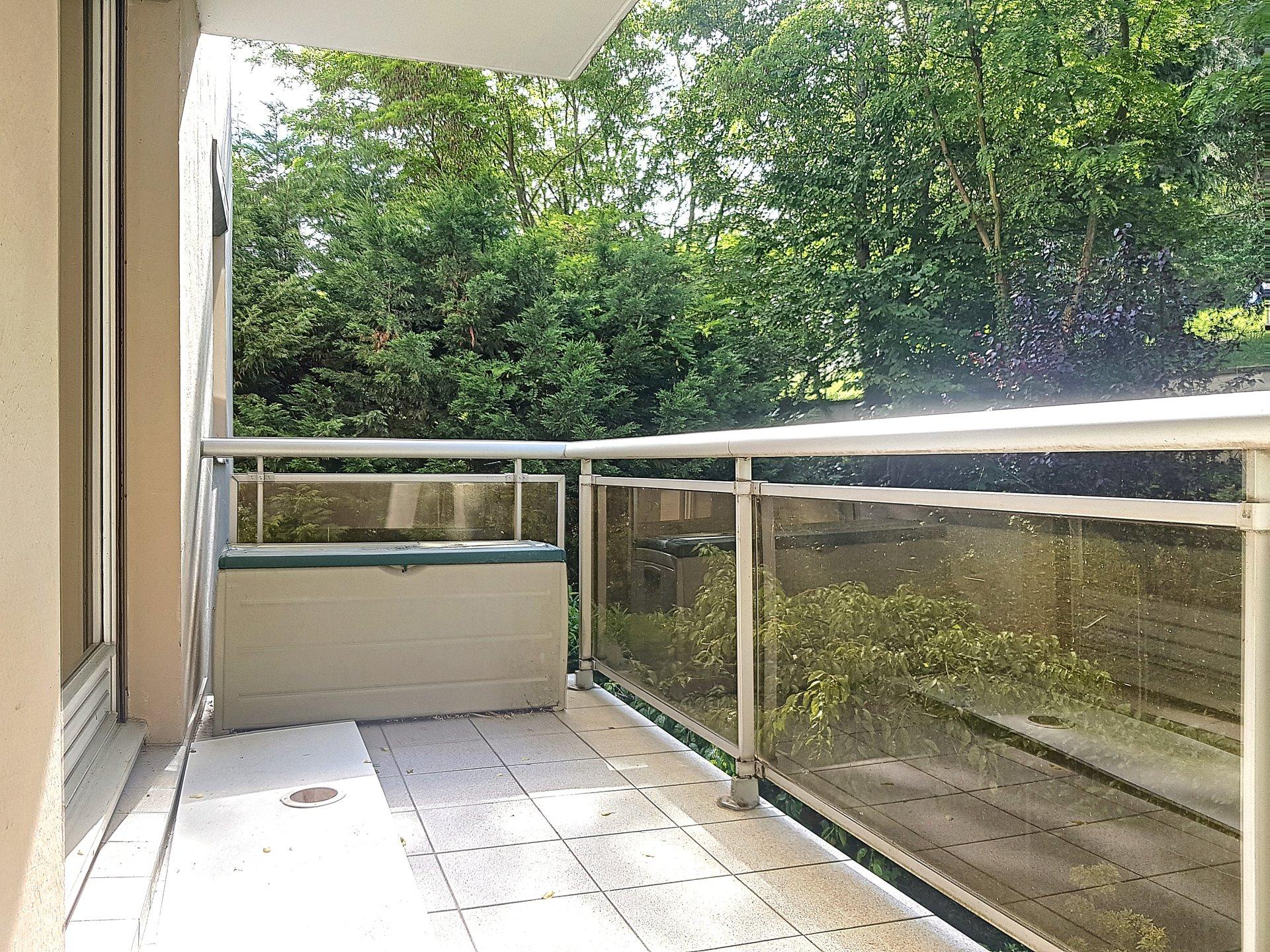 """"""" jardin des plantes allee chantegrillet """" t5 avec balcon"""