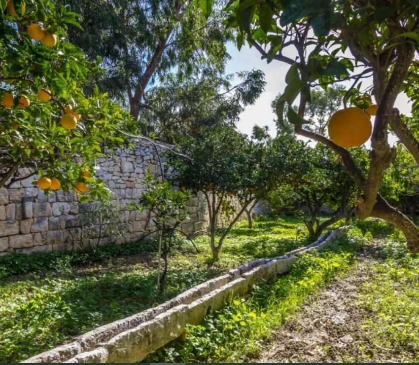 Sale Villa - Zebbug - Malta