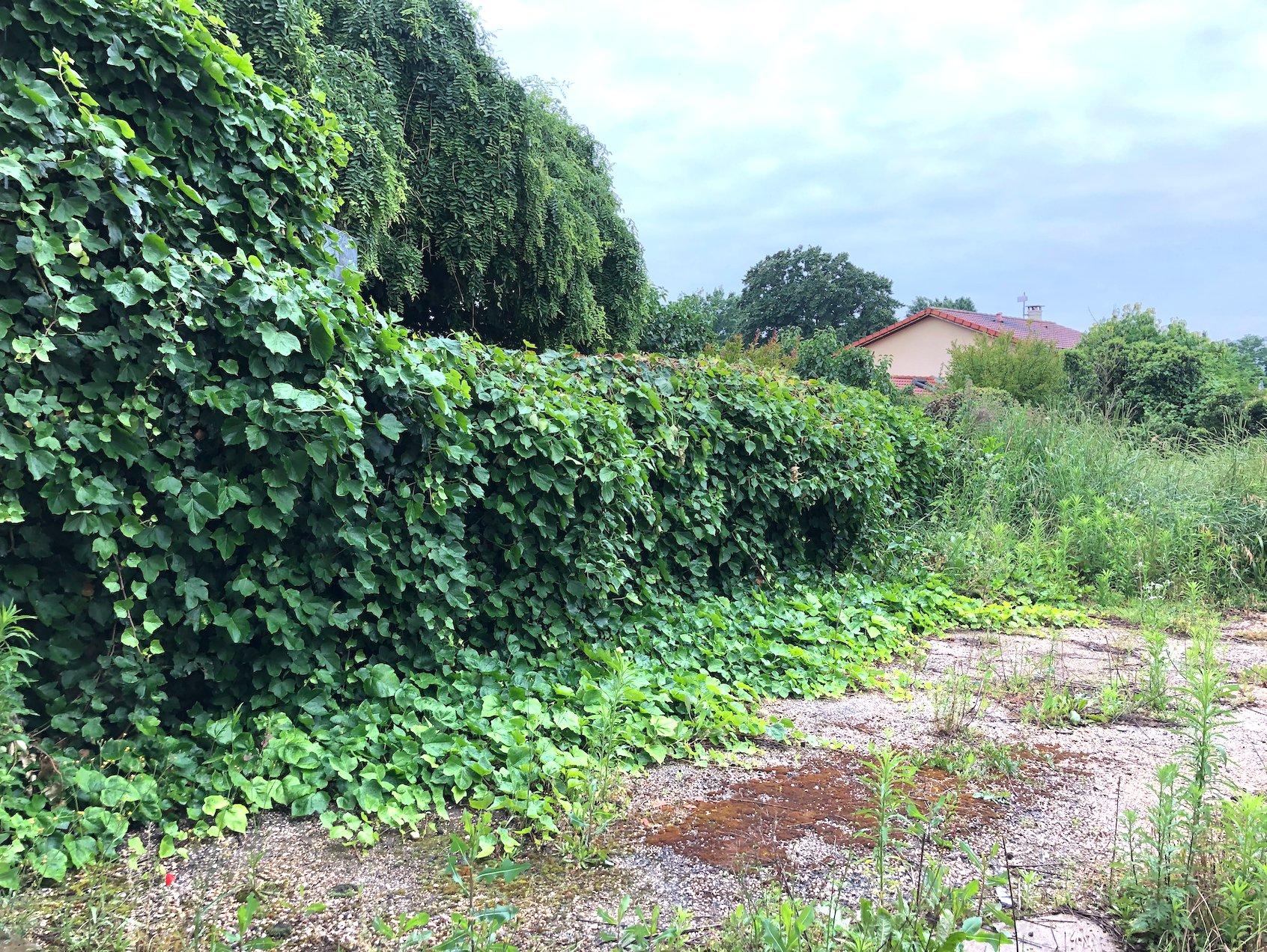 Villars les Dombes, maison a rénover dans le centre du village