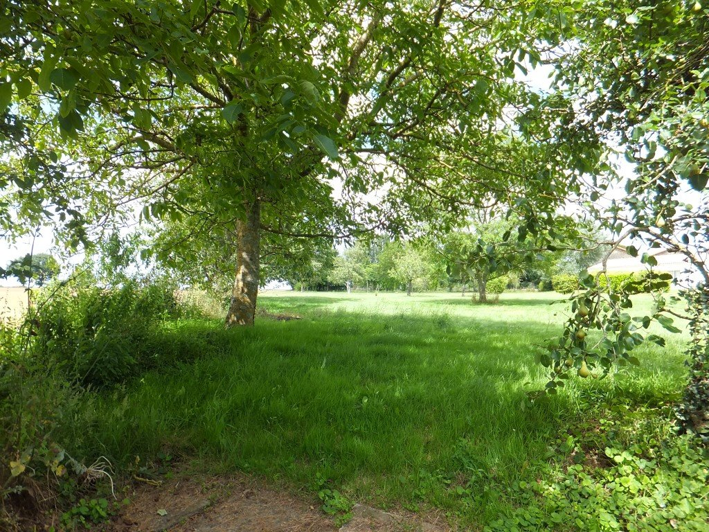 House with large land for sale in Poitou-Charentes