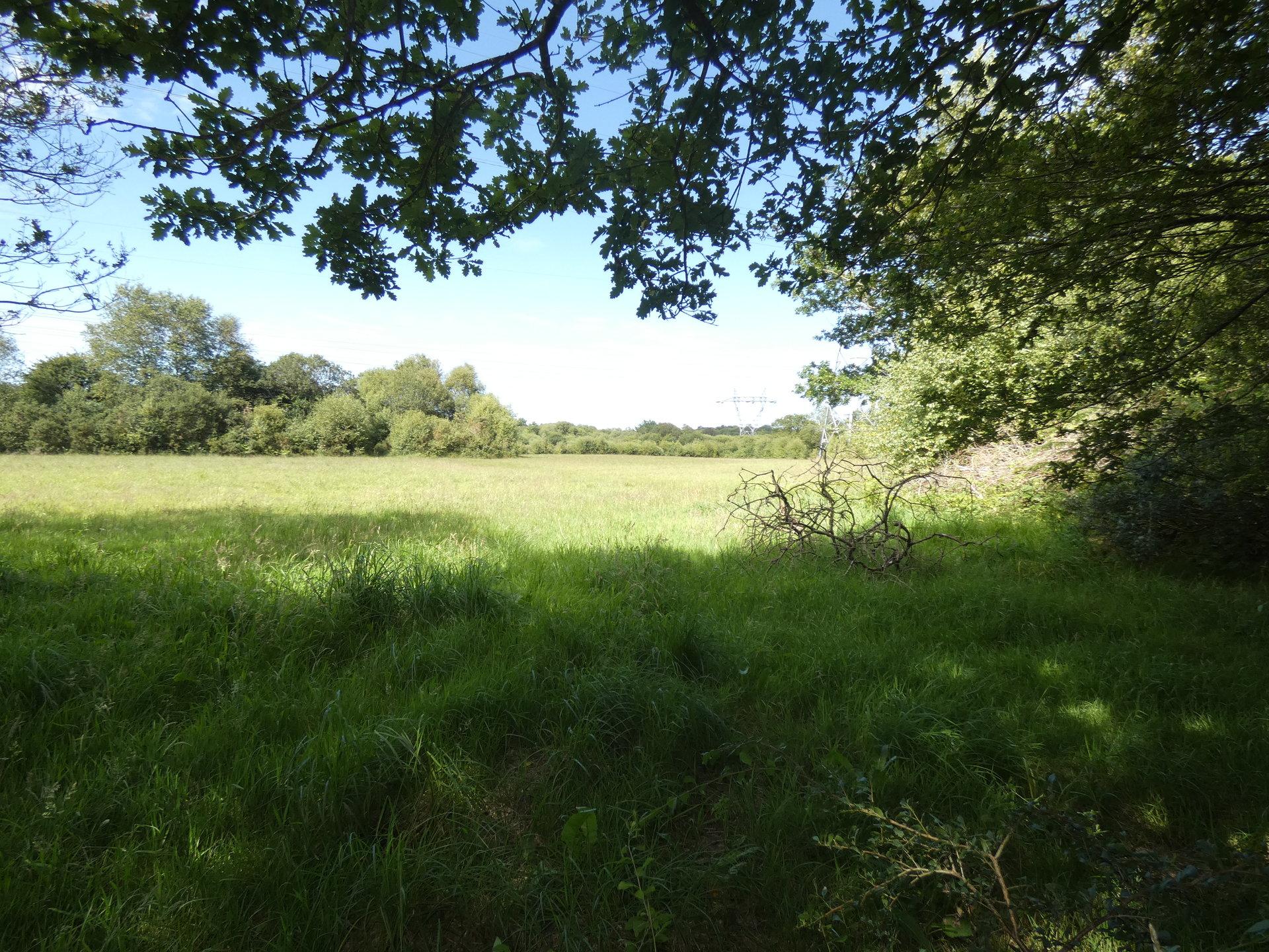 Moulin sur 3.4 hectares