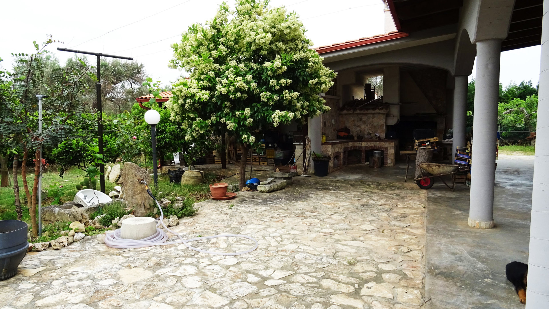 Sale Cottage - Oria - Italy