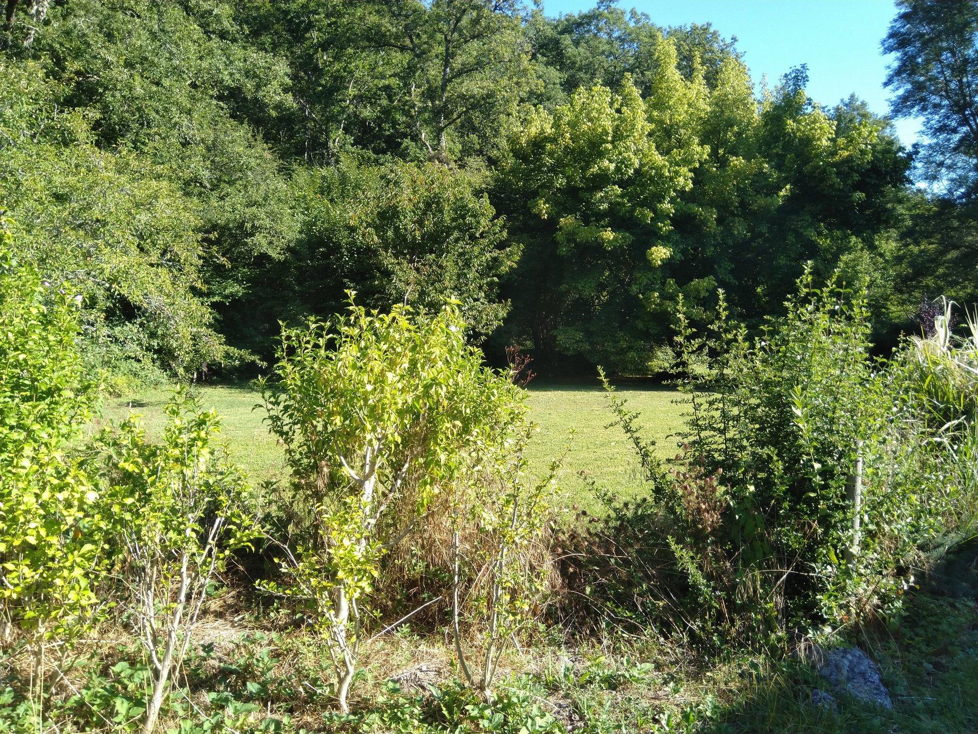 Bungalow 3 beds, quiet garden