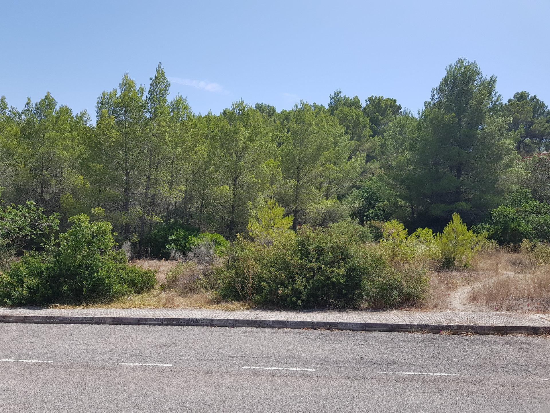 Sale Plot of land Santa Ponsa
