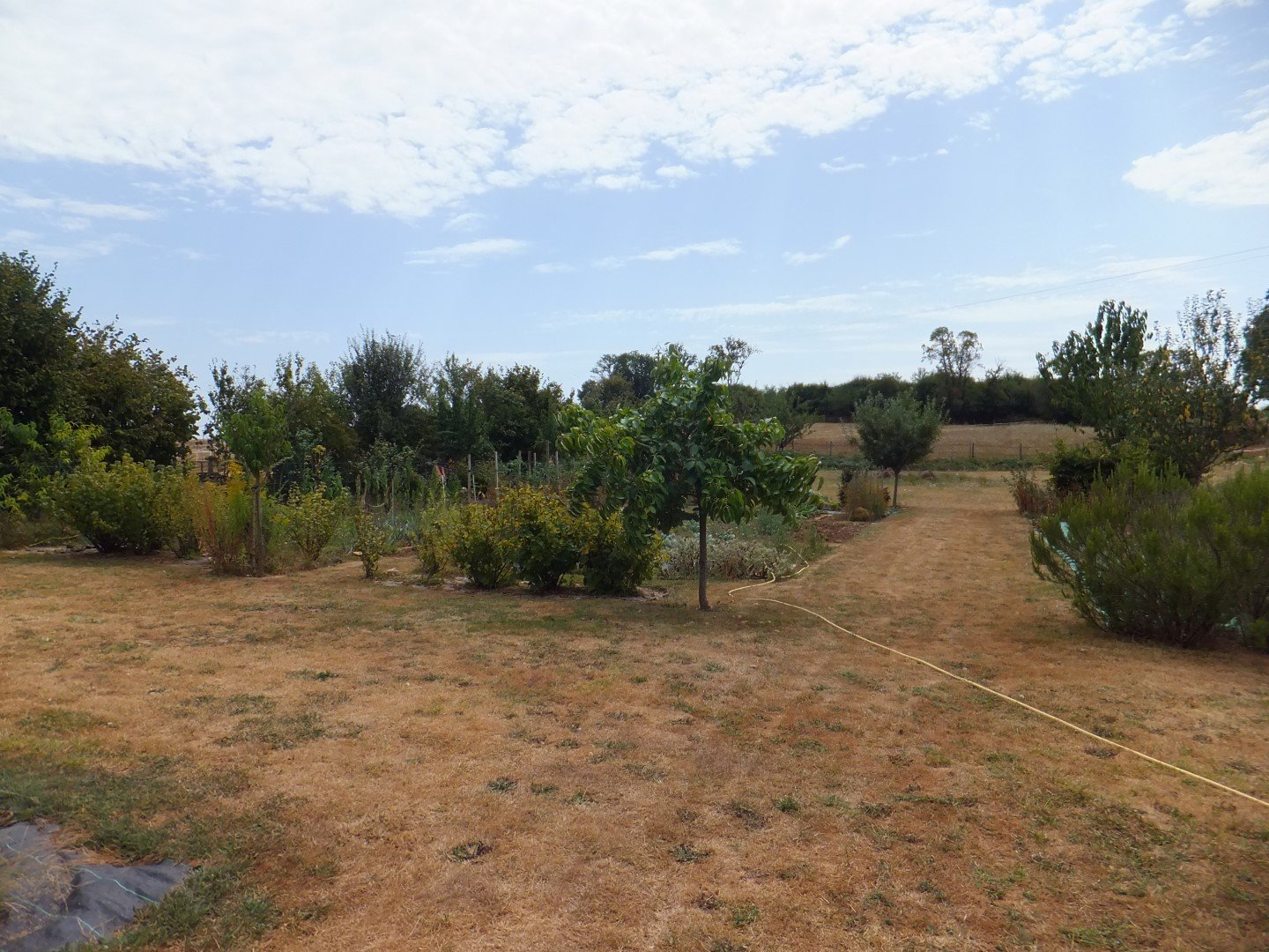 Family house with outbuildings for sale Charente-Dordogne