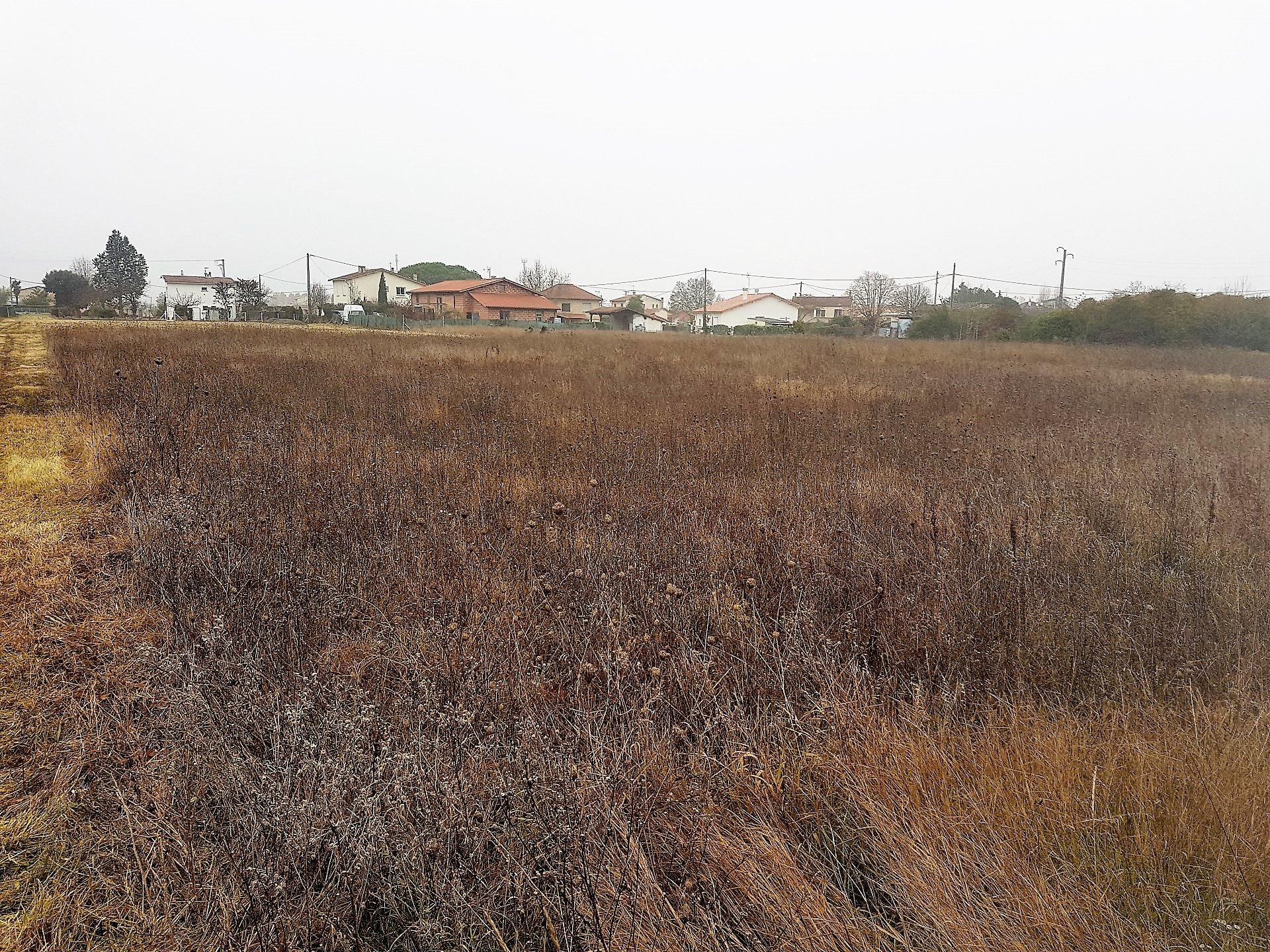 Grisolles terrain constructible  à vendre