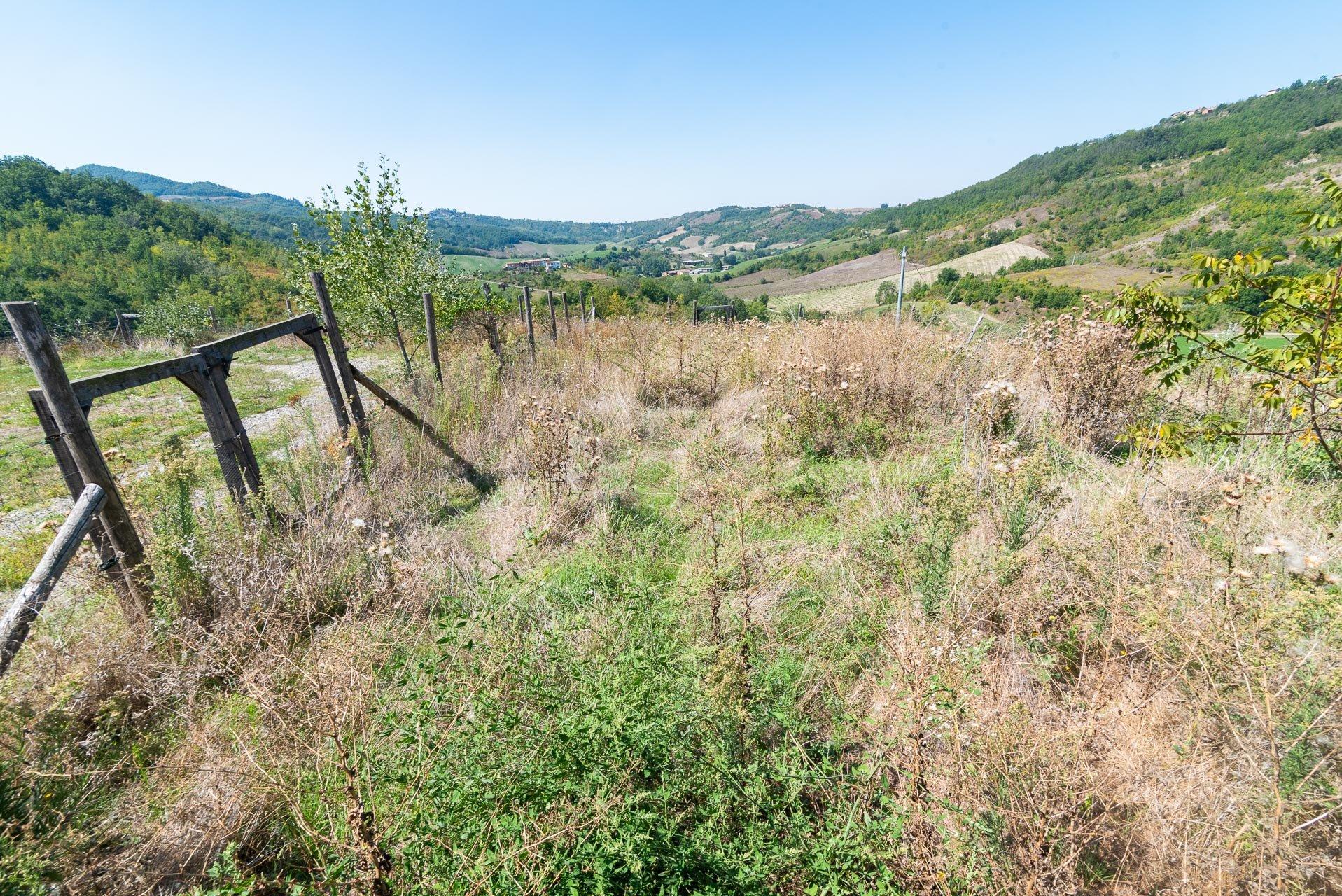Immobilien zum Verkauf in Casasco in Val Grue, Südpiemont