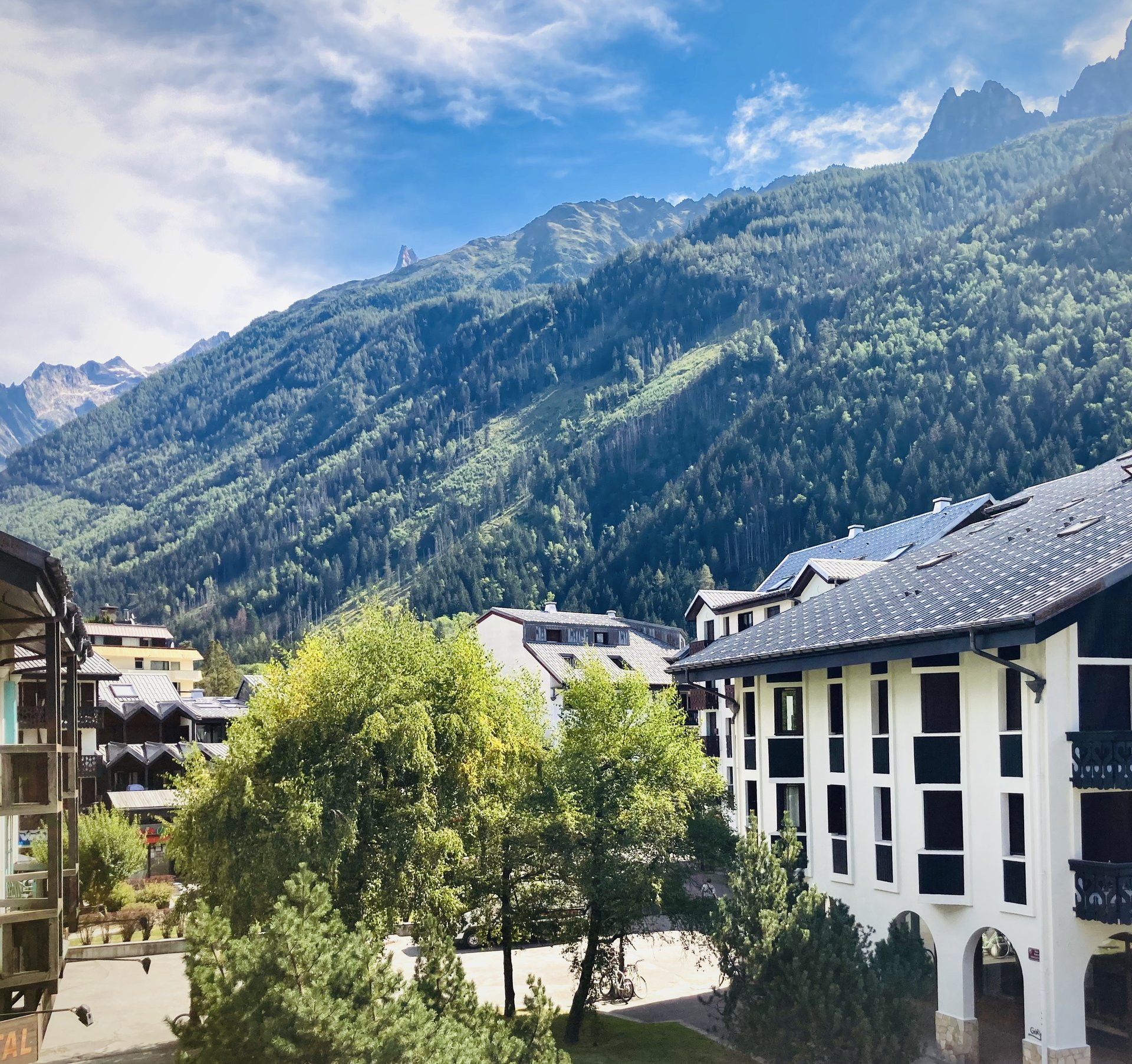 Apartment, 1 bedroom , Chamonix Centre
