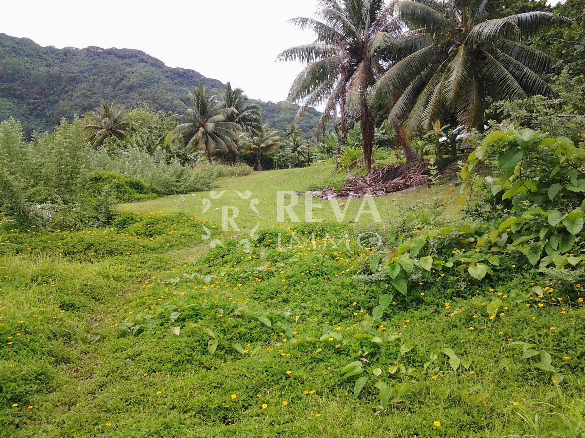 Sale Building land - Huahine - French Polynesia