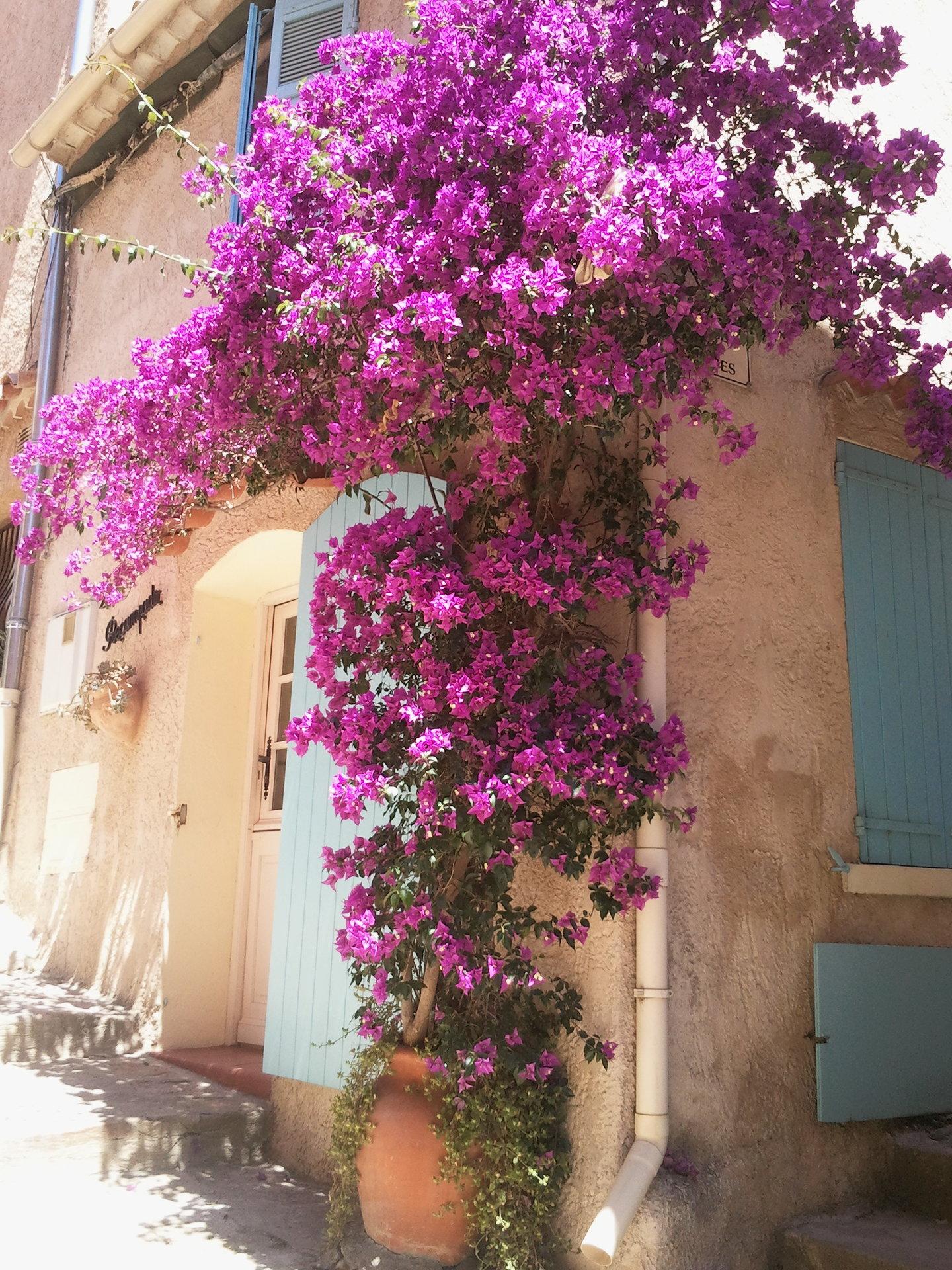 Sale Village house Bormes-les-Mimosas