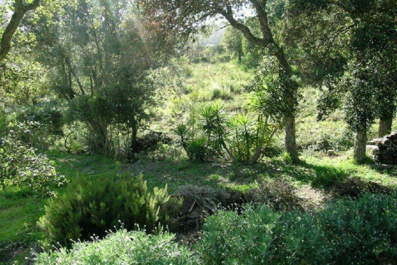 Sale Plot of land Les Adrets-de-l'Estérel
