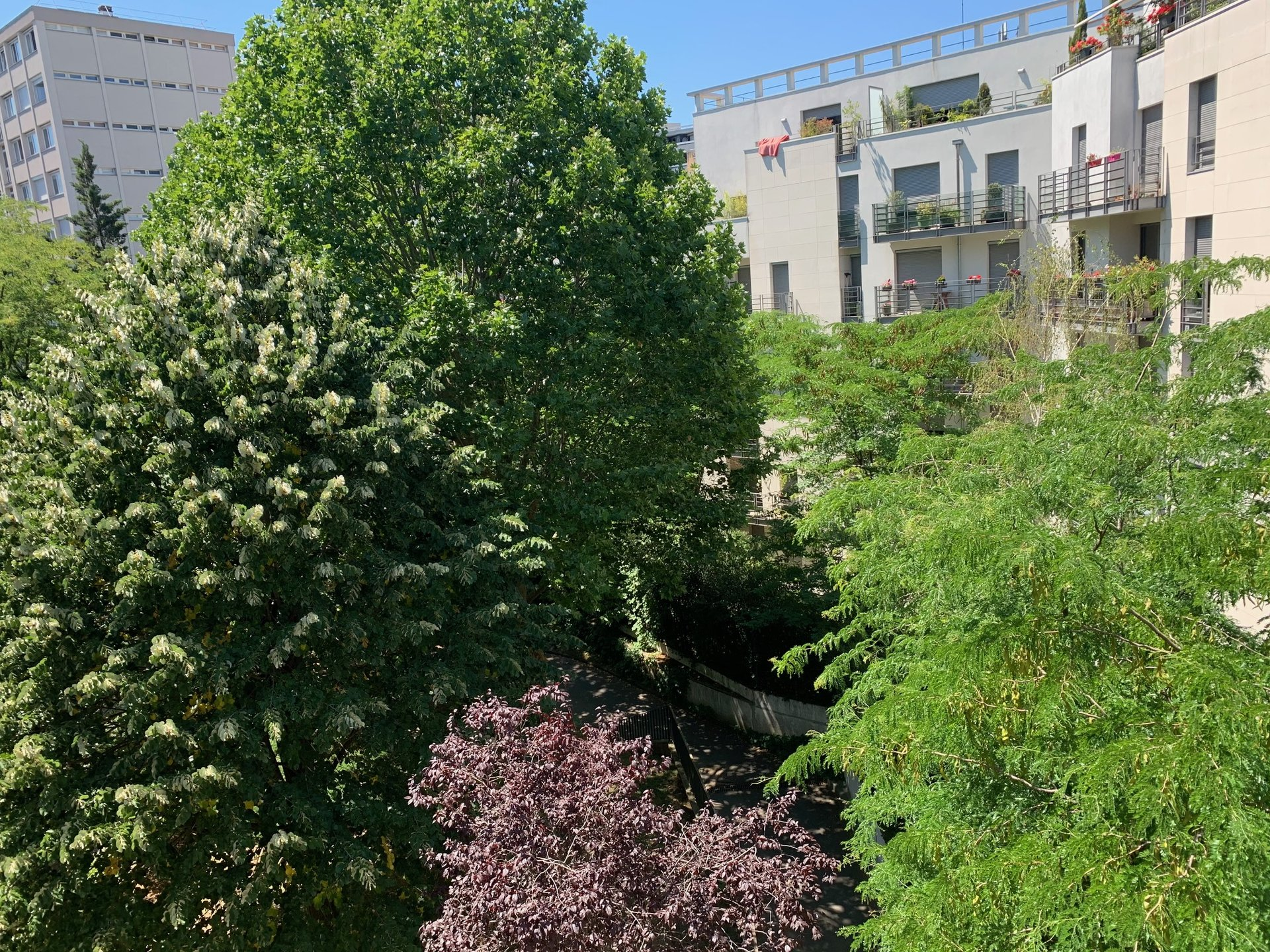 520 Parc Montsouris