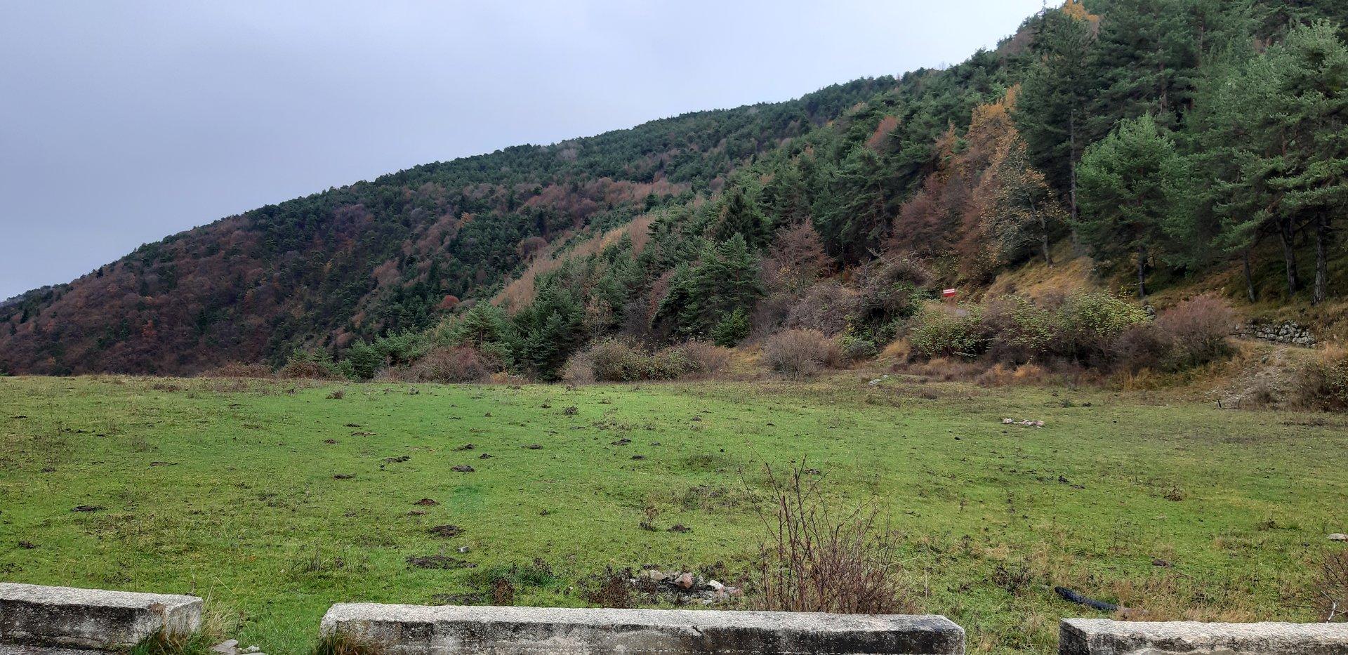 13 hectares de terrains