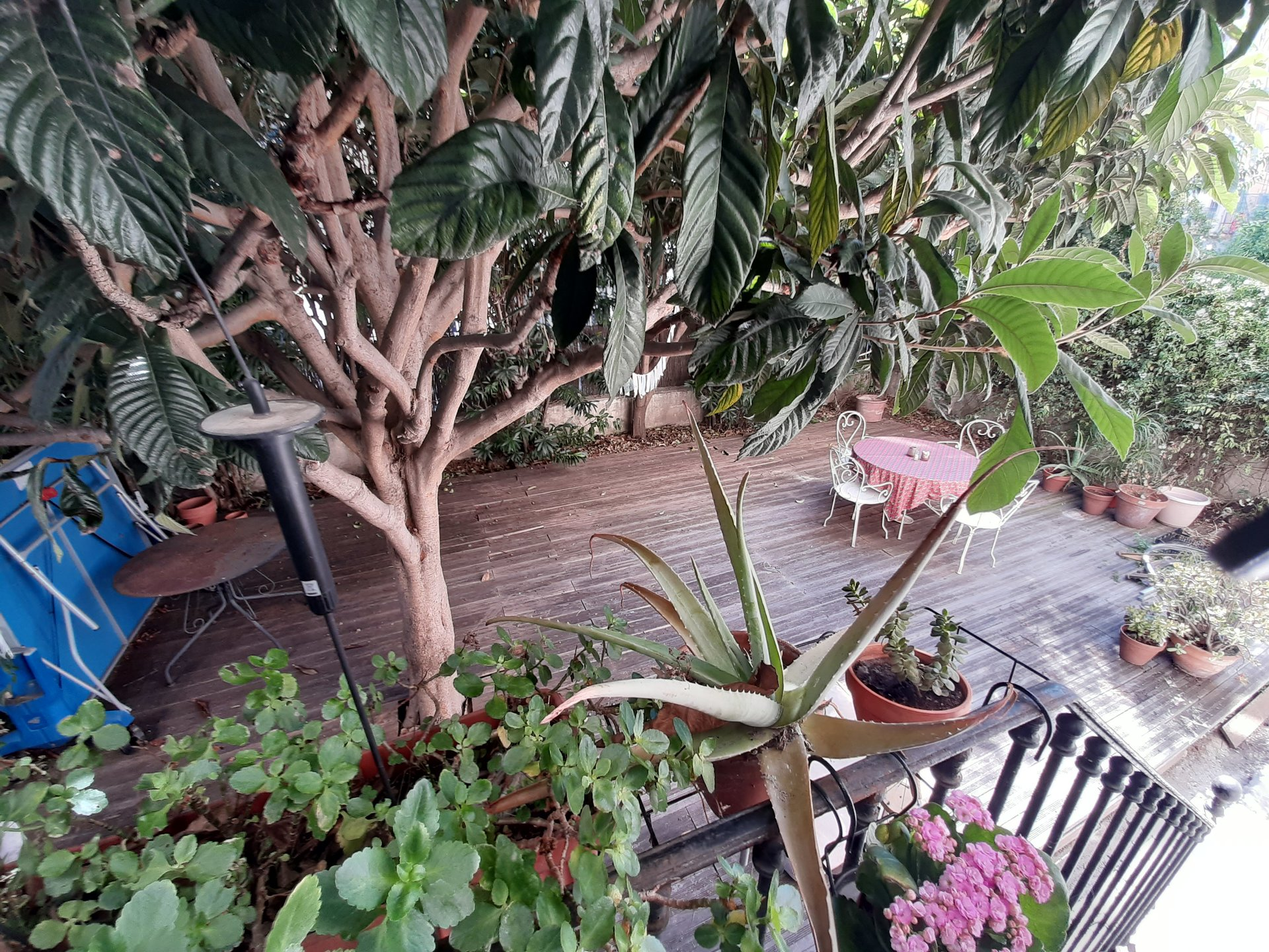 Sous offre F4 avec terrasse- jardin au cœur de la Libération