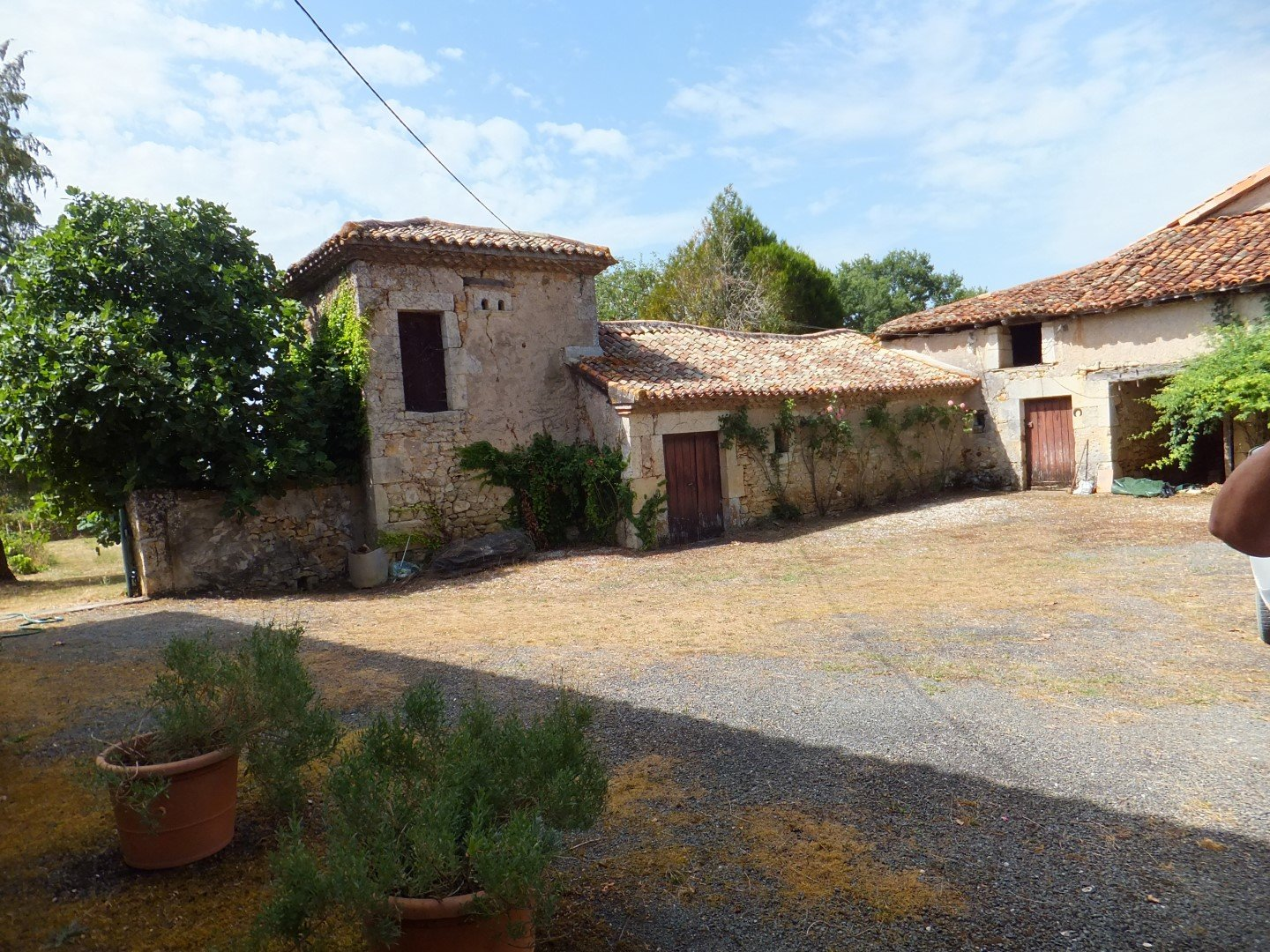 House with land and forest for sale in Poitou-Charentes