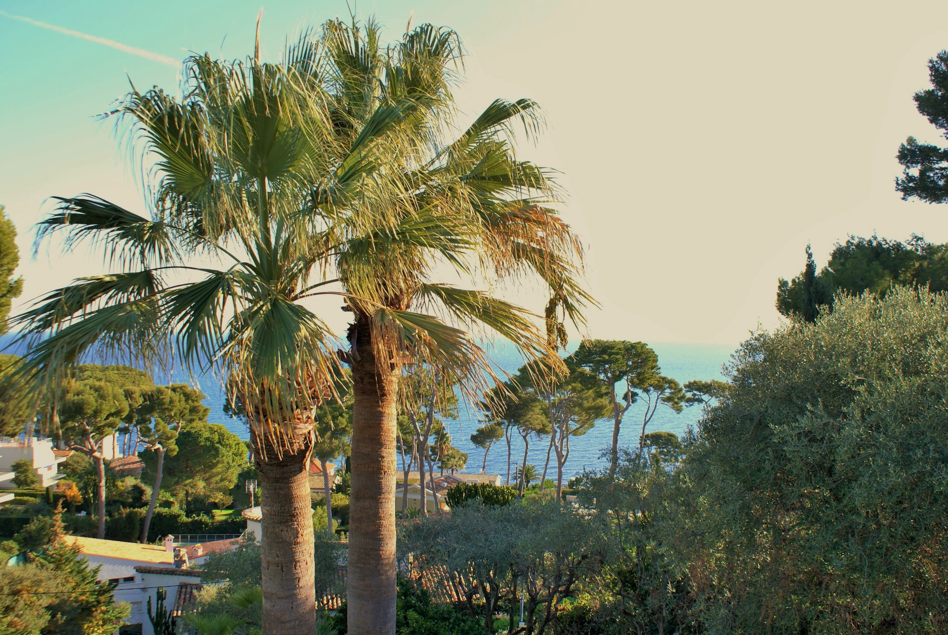 Cap d'Antibes - Villa with sea view