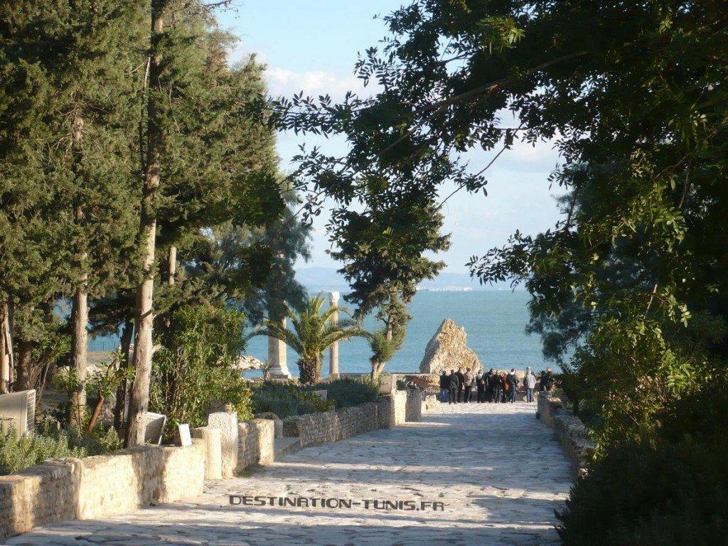 Vente Villa à Carthage