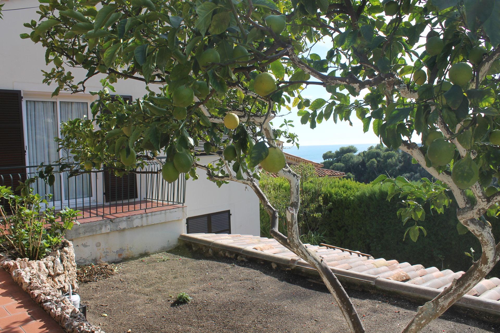 Villa individuelle vue mer proche Centre.