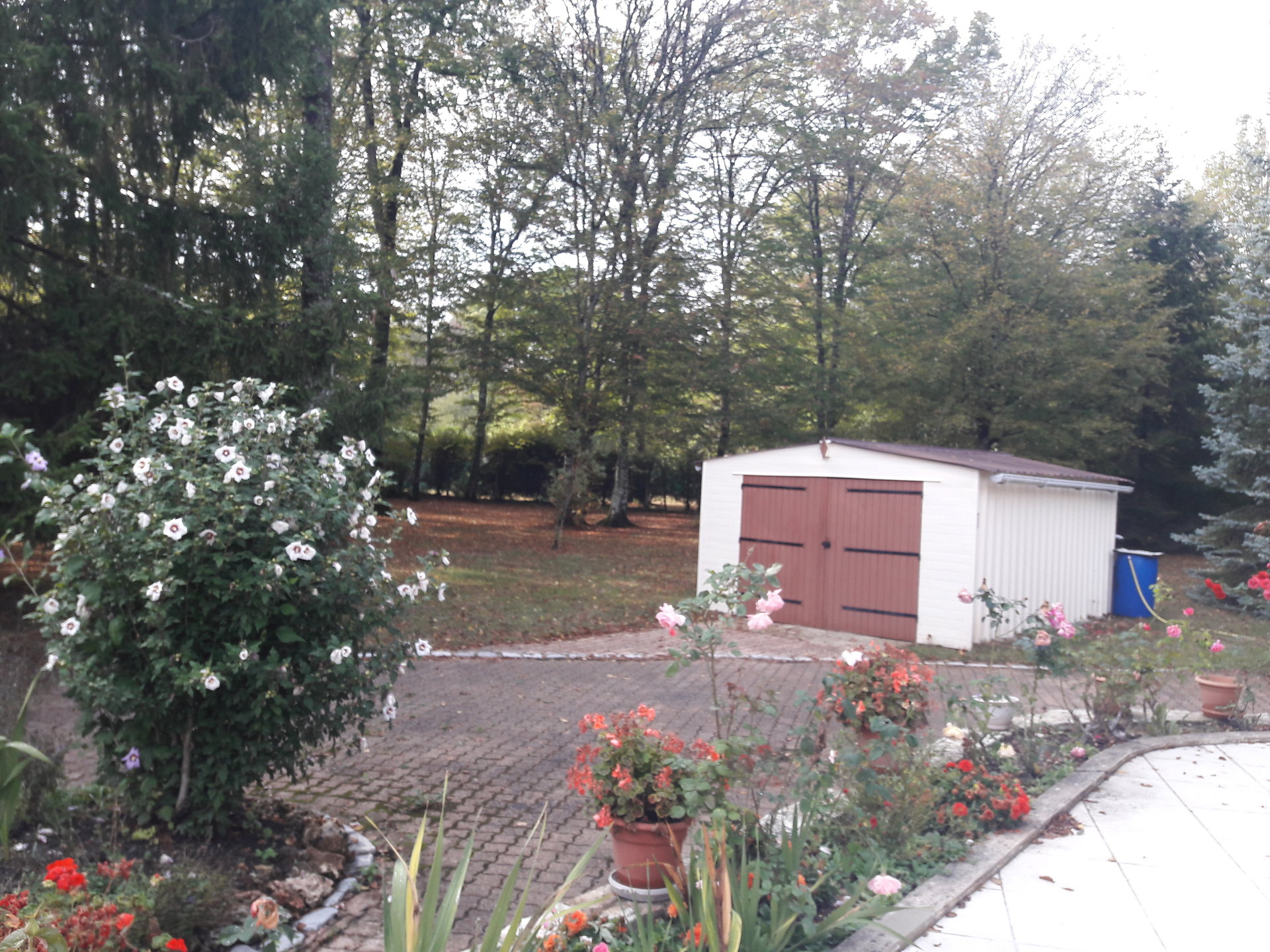 Plain pied 3 chambres avec parc arboré de 4983 m²