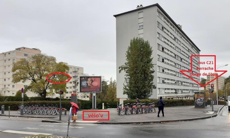 Location Appartement - Lyon 5ème