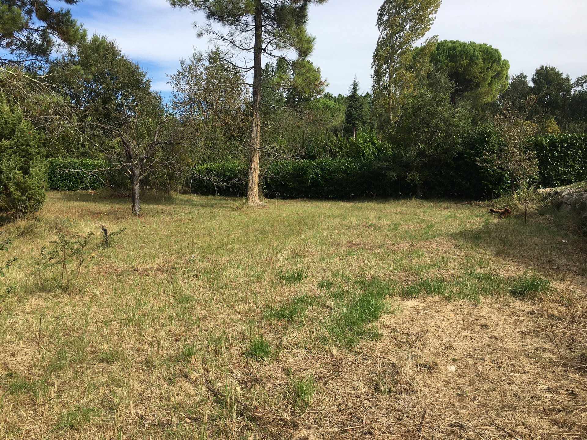 Nice flat plot of land in Montauroux