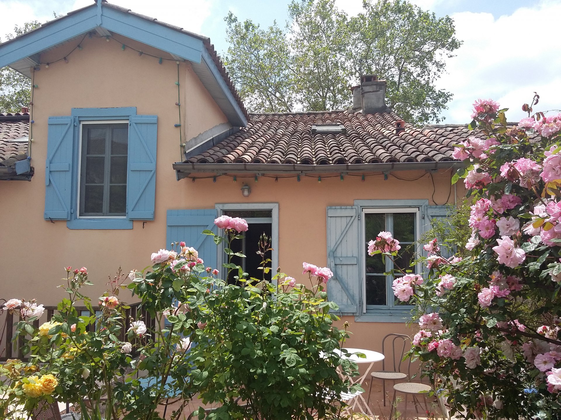 Village house with 1 gite, Pyrenees view, garden