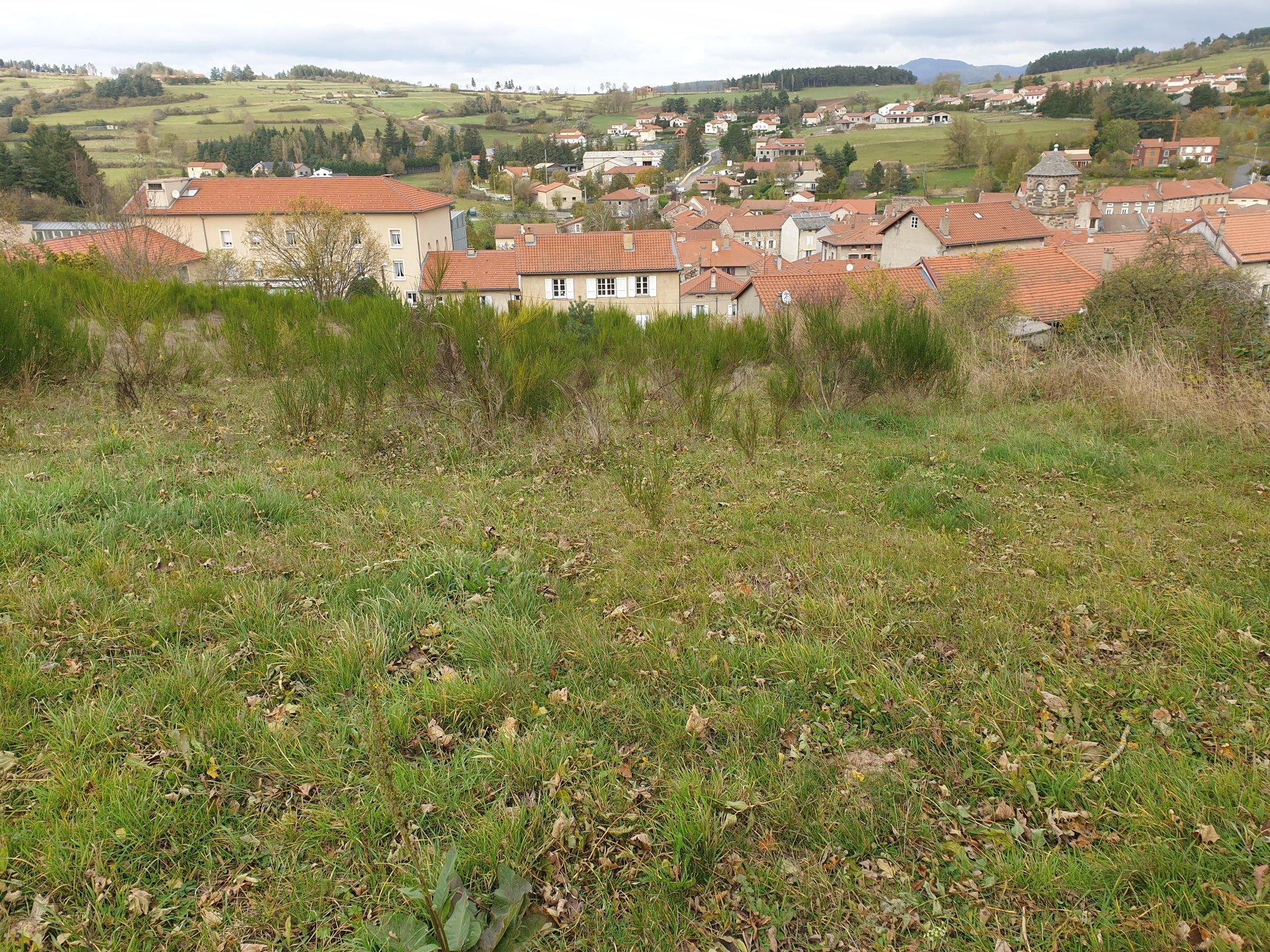 Sale Building land - Laussonne