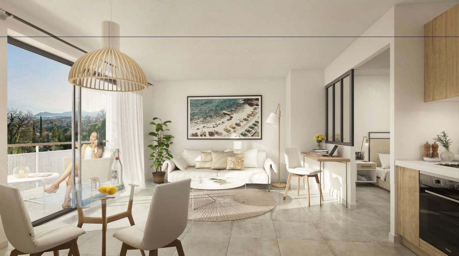 Development Apartment - Cannes