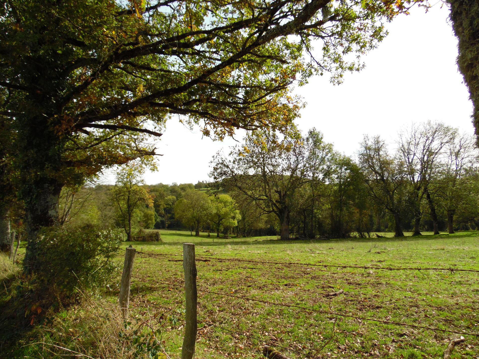 Zu verkaufen in der Creuse, Bauernhaus, Scheune, 13 ha. Land