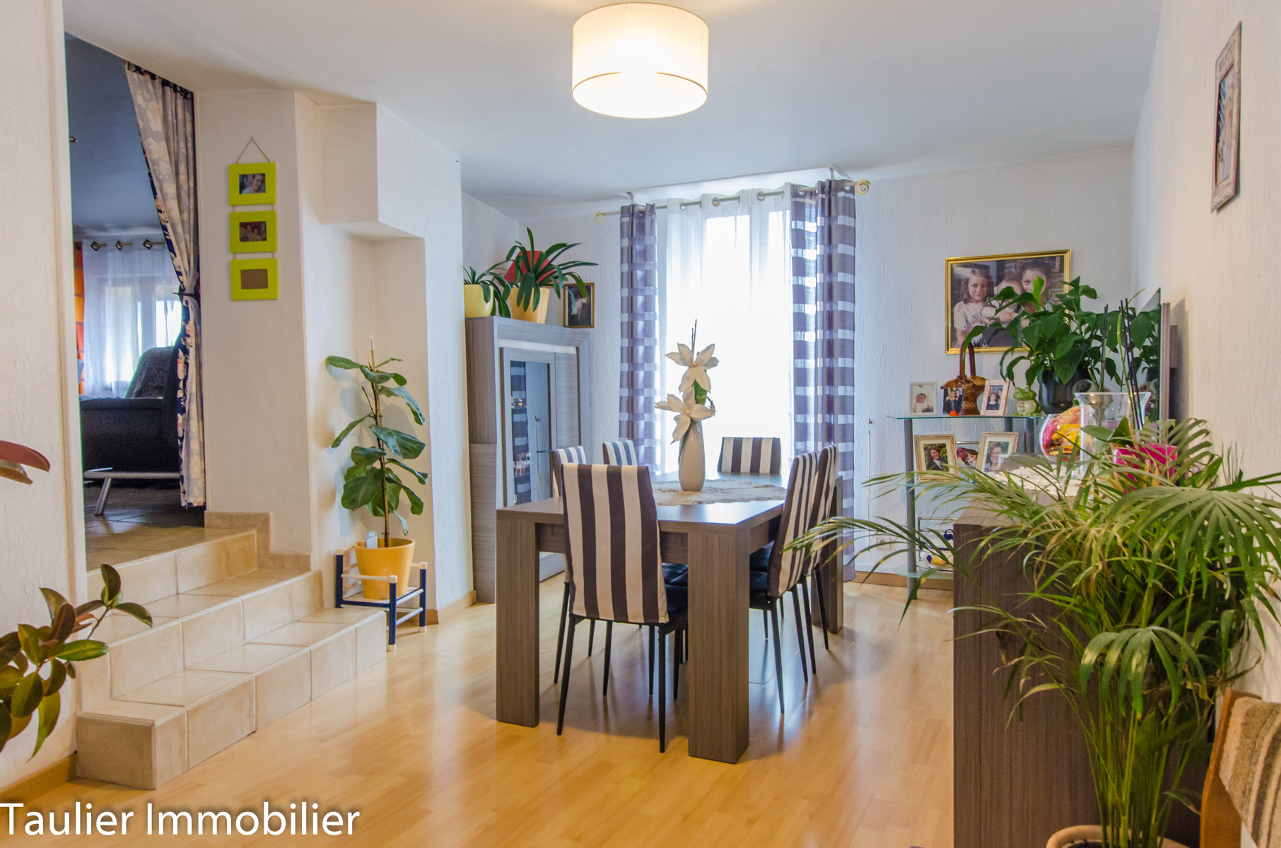 Appartement avec jardin + Maison de ville