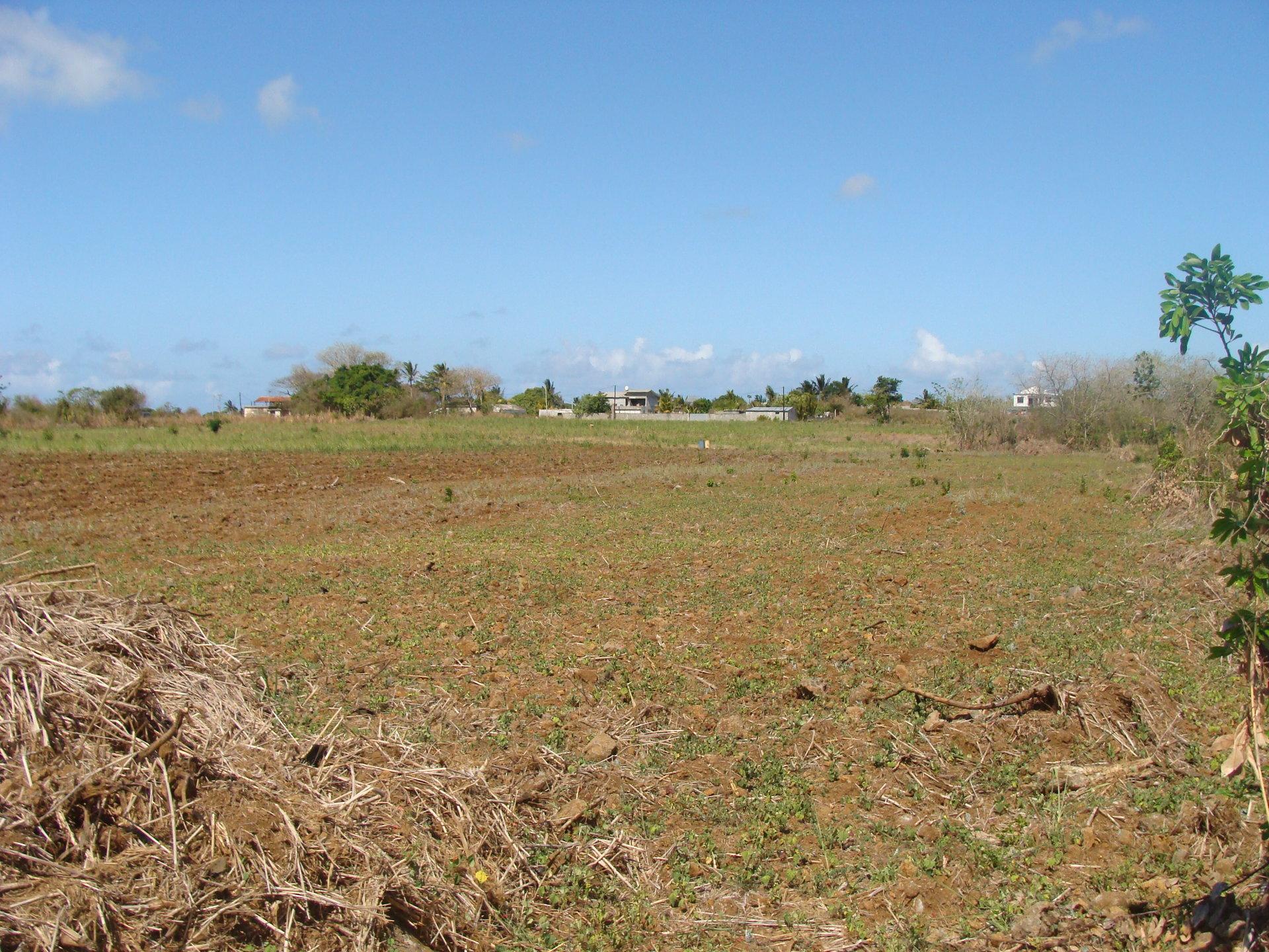 Land (agricultural)