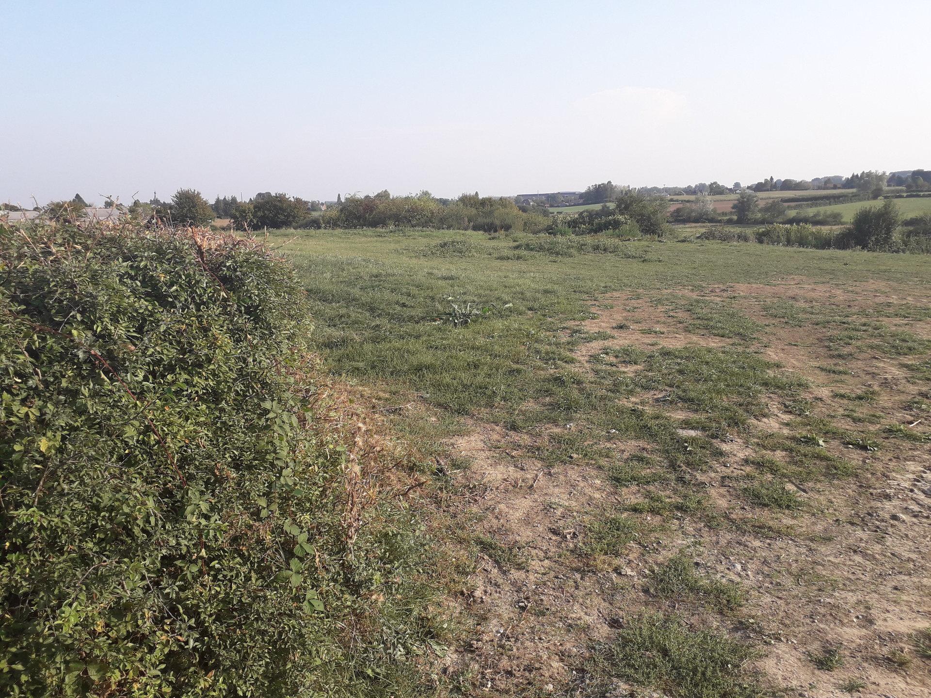 BERLAIMONT : Vue sans vis à vis sur le bocage avesnois