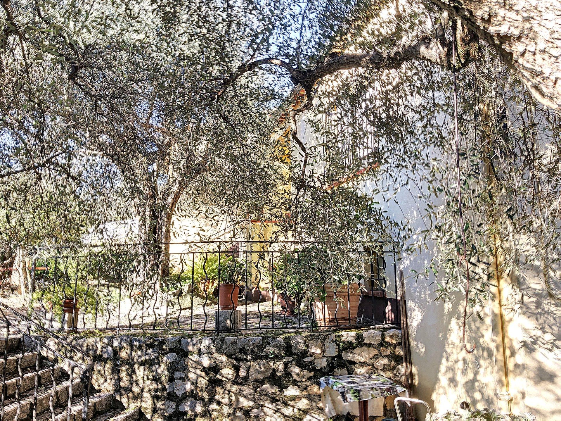 Grasse Saint Antoine Villa 3p à rénover avec parcelle détachable
