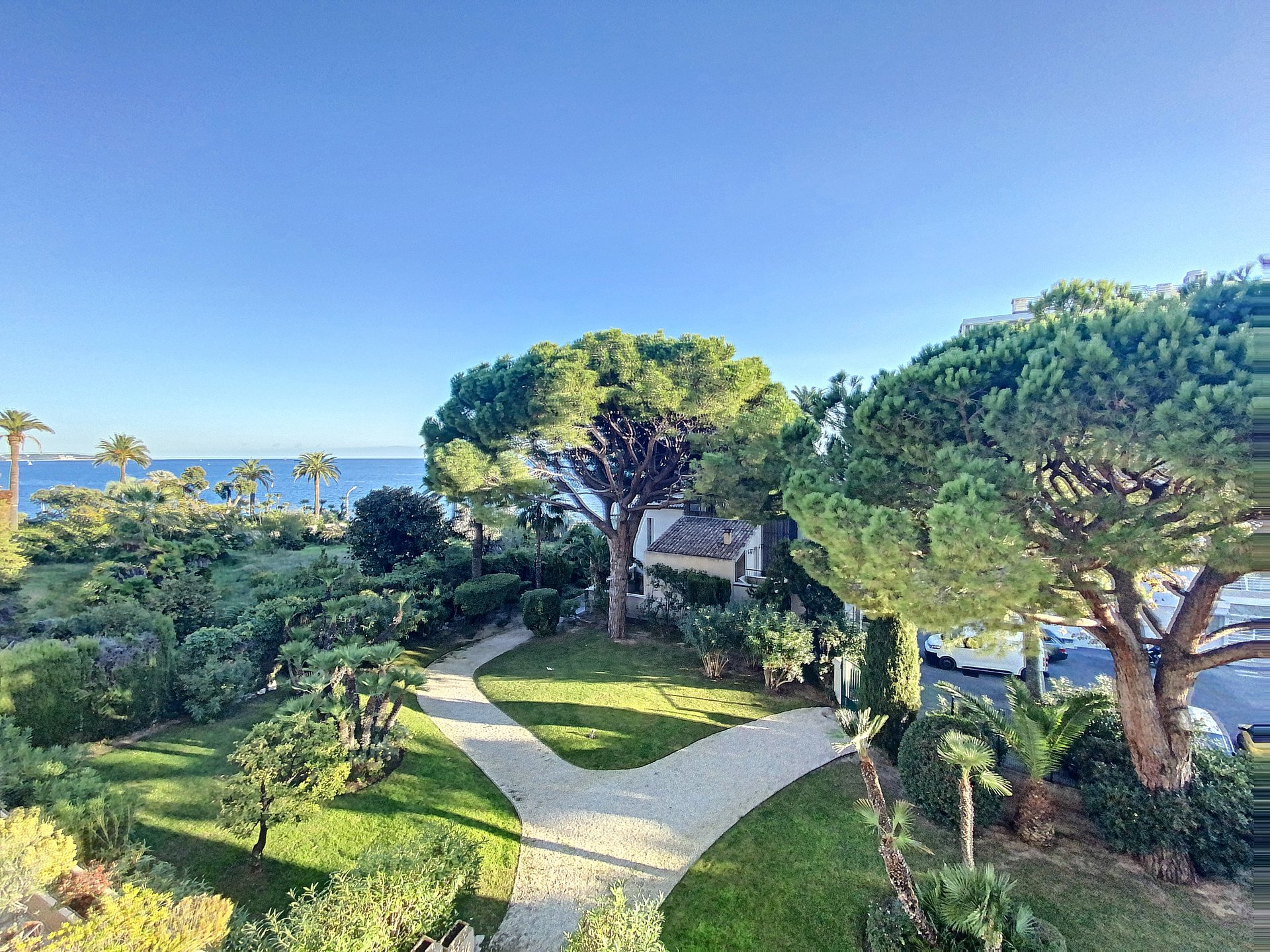 Cannes Palm beach 3P 65 m2 renovated sea view