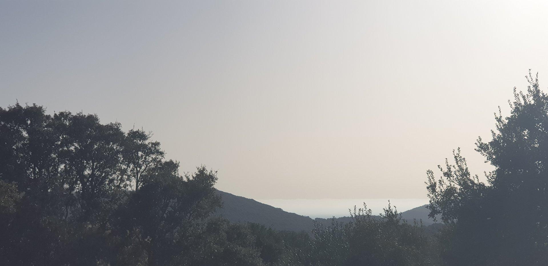 Terrain vue mer avec projet de construction d'une villa à Figari-Monacia