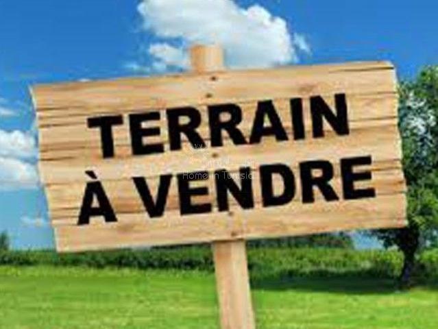 Vente Terrain constructible - Chatt Meriem - Tunisie