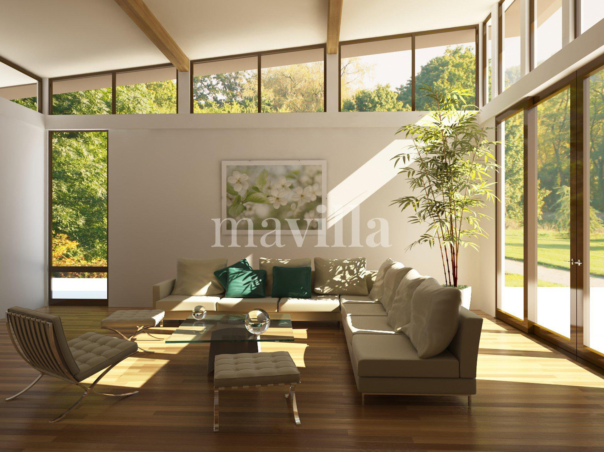 Living-room Natural light Wood floors