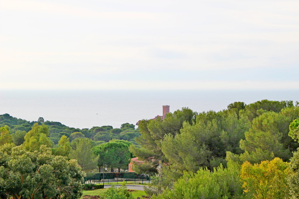 CAP ESTEREL LE HAMEAU 1 bedroom sea view