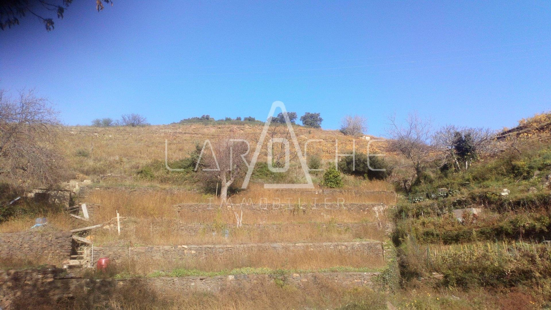 Sale Not constructible land - Collioure