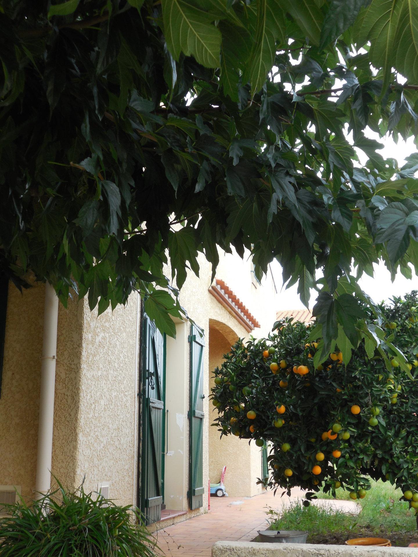 Grande villa familiale en 3 faces à vendre à Perpignan sud