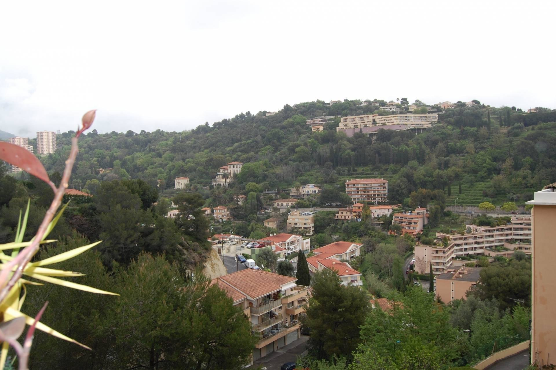 Location Appartement - Roquebrune-Cap-Martin Vallonnet